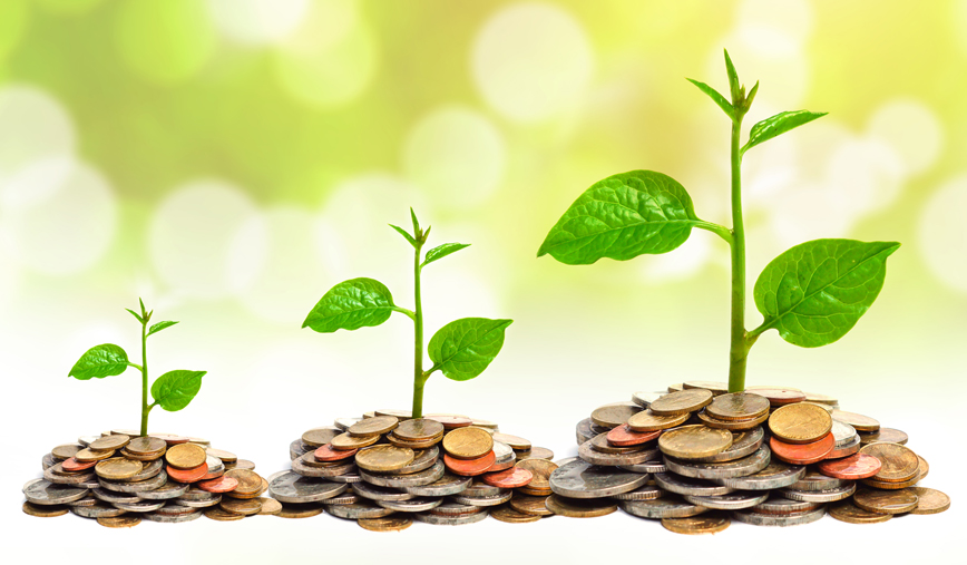 Sustainable Investing on the Rise