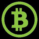 Crypto Bitcoin Icon