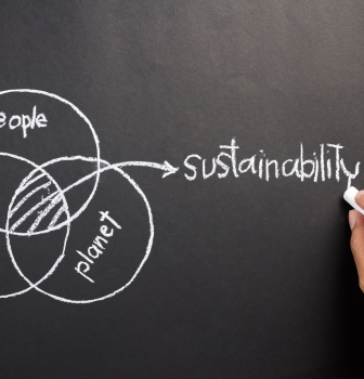 Sustainability Managers Can Help Your Company Become More Sustainable