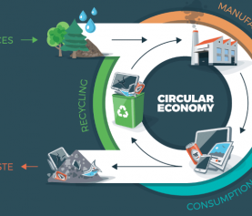 Circular Economy Could Cut Carbon Emissions in Europe by 70 Percent
