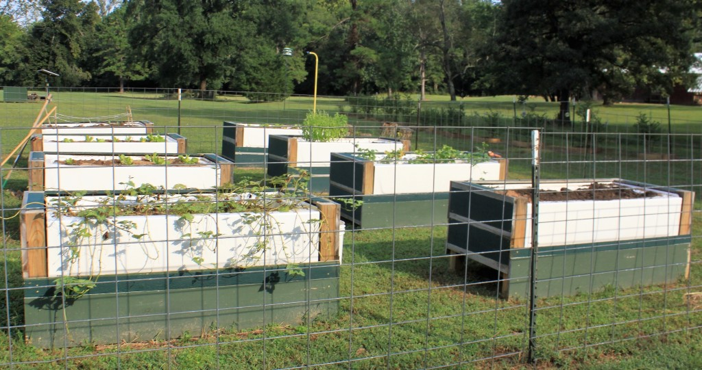 Bathtubs from The Home Depot turned into garden boxes at Ferncliff Summer Camp